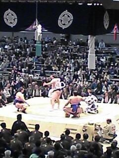 甲子園→阪神なんば線→大相撲