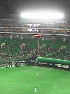 不景気な野球場